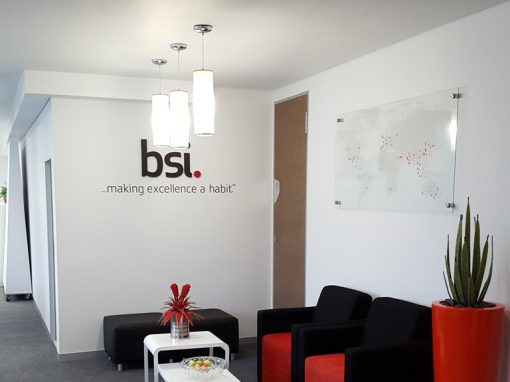 bsi south africa