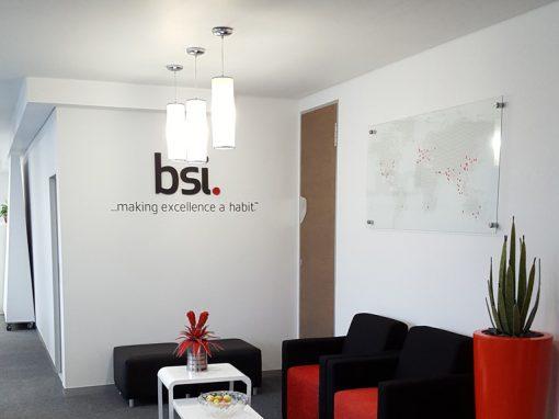 bsi south africa